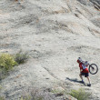 Foto Stock: Mountain biker uphill