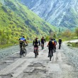 Stock Photo: Group of bikers on old mountain road