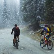Two Mountain bikers in fog on mountain — Stock Photo