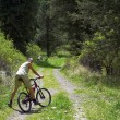 Mountain bikers on old rural road — Stock Photo #2709896