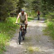 Mountain bikers on old rural road - ストック写真
