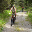 Mountain bikers on old rural road — Stock Photo