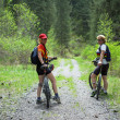 Two womens on mountain bikes in forest — Stock Photo