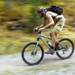 Stock Photo: Speed motion mountain biker