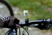 Flower on woman bike — Stock Photo