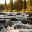 Morning on mountain river — Stock Photo