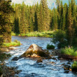 Morning on mountain river — Stock Photo #3376291