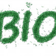 Royalty-Free Stock Photo: Text bio of the grass