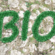 Text bio of the grass — Foto de Stock