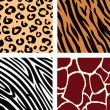 Tiger, zebra, giraffe, leopard pattern - Stock Vector