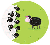 Black and white sheep — Stock Vector
