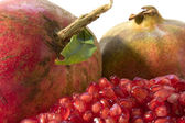 Pomegranate close up — Stock Photo