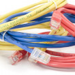 Utp cables closeup - Stock Photo