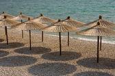 Parasols de plage — Photo