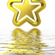 3d golden star with reflection — Stock Photo