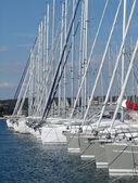 Yacht masts in marina — Stock Photo