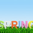"Varicoloured word ""spring"" — Stock Photo"