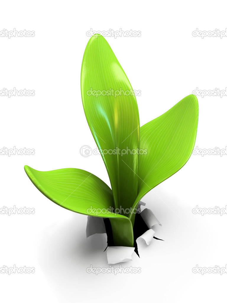 Young sprout isolated on white background 3D rendering — Stock Photo #3010863