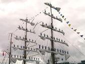 Sailors in sail — Stock Photo