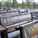 Old Faithful Benches — Stock Photo #2813006
