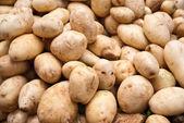 White Potatoes — Stock Photo