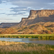 Stock Photo: Desert Wetlands