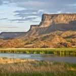 Desert Wetlands — Stock Photo