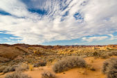 Desert Tranquility — Stock Photo