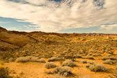 Desert Skies — Stok fotoğraf