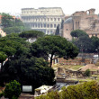 The Palatine Hill & Colosseum — Stock Photo