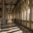 Venetian Balcony Columns and Arches - Stock Photo