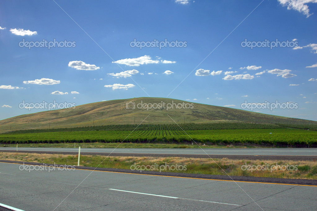 Farming Fields on a Hill with clouds on the background  Stock Photo #2732875