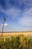 Abrir la puerta a un campo en helena — Foto de Stock