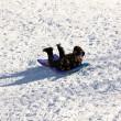 Little Boy Sledding down the Hill - Stock Photo