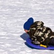 Stock Photo: Little Boy Sledding down Hill