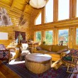 Close up on the Living Room in a Cabin - Photo