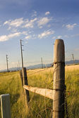 Wooden Gate with Electric Pole — Stock Photo