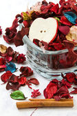 Close up on dried leaves and rose — Stock Photo
