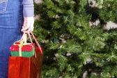 Mädchen Tasche mit Weihnachtsgeschenke — Stockfoto