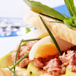 Tuna sandwich — Stock Photo #3011349