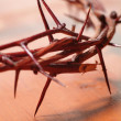 Crown of Thorns — Stock Photo #3468384