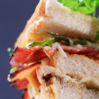 Royalty-Free Stock Photo: Club sandwich
