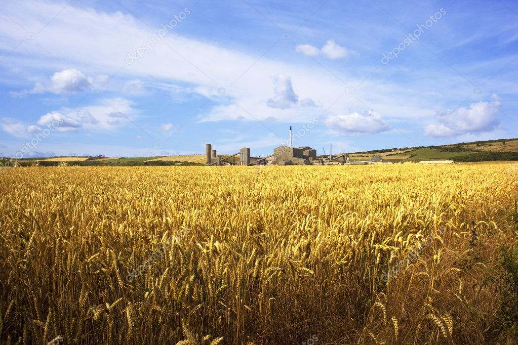 A potash mine with golden wheat fields under a blue summer sky — Stock Photo #2764630