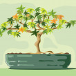 Bonsai — Stock Vector