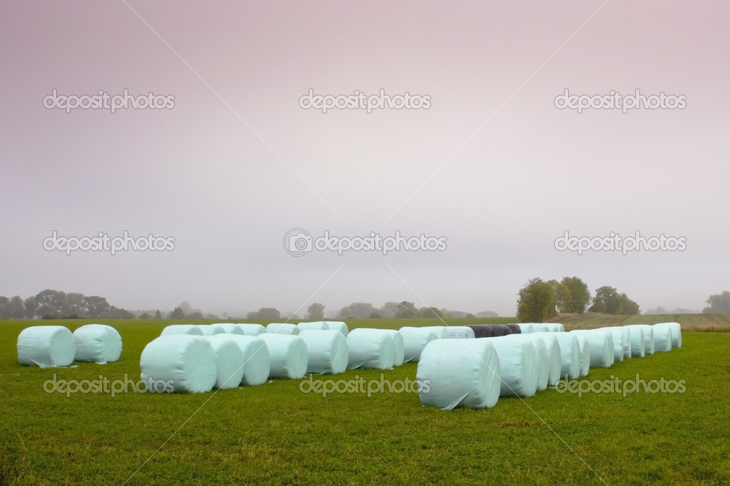 A field with plastic wrapped bales of hay under a colorful sky — Lizenzfreies Foto #2796859