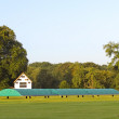 Stock Photo: Cricket scoreboard and covers
