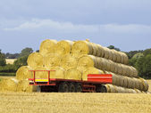 Round bales and trailer — Stock Photo