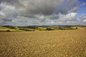 Wolds view — Stock Photo