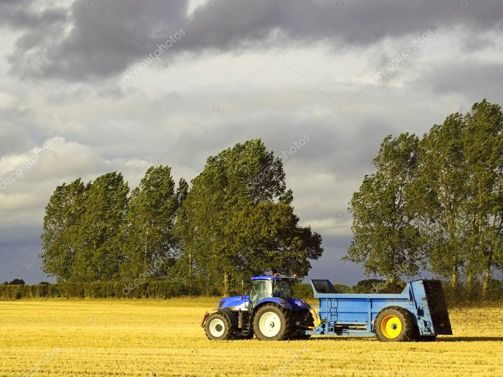 A blue tractor spreading manure on a stubble field — Stock Photo #2808160