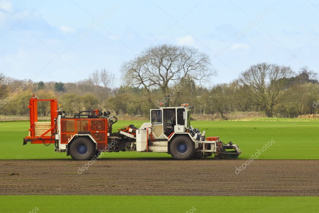 A commercial turf lifting operation in springtime  Stock Photo #2900338